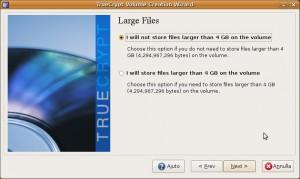 Si devono memorizzare file più grandi di 4 GB?
